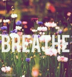 Stop and breathe, everything worth having is worth fighting for.