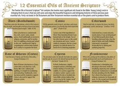 Young Living Essential Oils: 12 Essential Oils of Ancient Scripture Bible