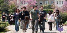 2016-2017 eğitim-öğretim yılında yükseköğretim kurumlarında cari hizmet maliyetlerine öğrenci katkısı olarak alınacak katkı payları ve öğrenim ücretlerinin belirlenmesine dair Bakanlar Kurulu kararı, Resmi Gazete'de yayımlandı. Kararda, DGS ile lisans eğitimi alacaklar ve Suriyeli öğrencilerle birlikte diğer ülkelerden kabul edilecek öğrencilerin ücret ödeme bilgileri yer alıyor.    Milli Eğitim Bakanlığı'nın (MEB) ilgili sayılı yazısı üzerine, Bakanlar Kurulu'nca 17 Ekim 2016'da alınan…