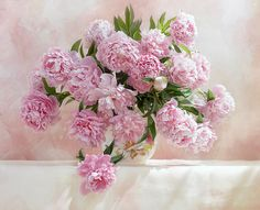 lovely pink peonies by shadalini