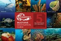 50 Best Dive Sites in the World