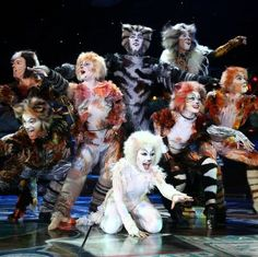 CATS is a musical composed by Andrew Lloyd Webber. Would love to see it again. :)