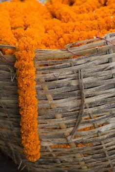 Marigold garland