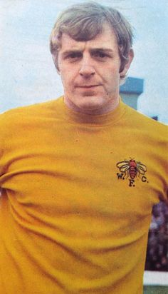 Barry Endean Watford Fc, Polo Shirt, T Shirt, Polo Ralph Lauren, Football, Hornet, Boys, Mens Tops, Heaven