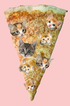 ummm... my two fave things, pizza and kitties.... but together its freaking me out.... lol