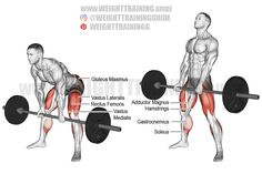 Good Back Workouts, Back Exercises, Fun Workouts, Shoulder Exercises, Face Pull Exercise, Leg Raise Exercise, Glute Activation Exercises, Best Shoulder Workout, Dumbbell Fly
