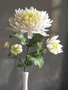 Japanese Chrysanthemum Fondant Flowers, Clay Flowers, Sugar Flowers, Flowers Nature, White Flowers, Paper Flowers, Beautiful Flowers, Japanese Chrysanthemum, Chrysanthemum Flower