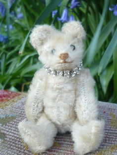 8a14505e89e Rare Adorable white antique Steiff Miniature bear c1915  Steiff My Teddy  Bear