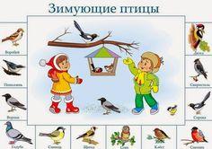"""МОЯ ПЕСОЧНИЦА: Тема """"Зимующие птицы"""""""