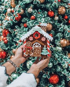 Christmas trees & Ginger bread houses 🎄🏠 ⋆ ARE YOU EXCITED FOR HOLIDAY S. The little awareness of the absolute most romantic party of the entire year Eieiei, the Christmas ce Christmas Feeling, Days Until Christmas, Noel Christmas, Merry Little Christmas, Christmas 2019, Winter Christmas, Christmas Countdown, Christmas Cookies, Christmas Wreaths