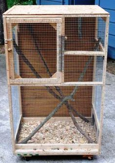 Garf needs one. Baby Squirrel Care, Squirrel Home, Flying Squirrel, Small Dog Cage, Small Animal Cage, Pet Cage, Diy Bird Cage, Bird Cages, Lizard Cage