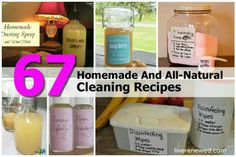 67 cleaning recipes