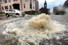 zoo animals among those escaping Duluth flooding