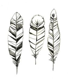 Feathers Print of Original Drawing - Feather Art. $20.00, via Etsy.