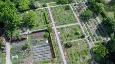 Ogród botaniczny z lotu ptaka [ZDJĘCIA Z DRONA] - Zdjęcie 57336 - LoveKraków.pl