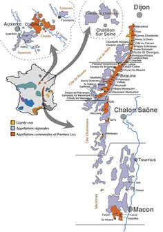 The Appellations of Burgundy #wine #france #burgundy #wineeducation