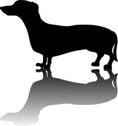 Weiner Dog Clipart Image: Little weiner dog or dachshund dog in silhouette with a drop shadow