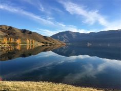 MacKenzie District Holiday Home accommodation. Black Forest Accommodation - Eight Houses just 40 minutes from LAKE TEKAPO