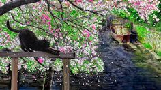以前に描いた絵を色編集加工してみました、水害の街をお絵描きしたもので、僕のお気に入り作品です。  季節の中に埋もれて・大塚博堂 http://youtu.be/MekYCMCnVbE