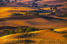 Magic Fields by emarcinek