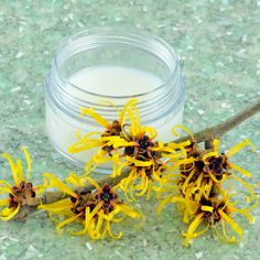 Homemade Morning Eye Solution with Witch Hazel 10 drops Chamomile essential oil 10 drops Lavender essential oil Anders 1/2 ounce pure aloe vera gel 1/2 ounce witch hazel extract