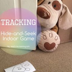 Tracking: Hide-and-Seek Indoor Game, such fun!