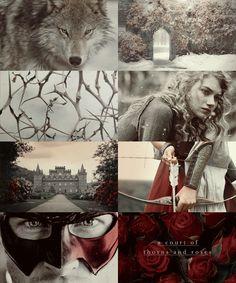 A Court Of Thorns & Roses — dreammetheworld: books read in 2015: A C O U...