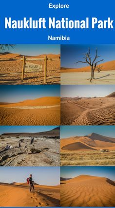 Naukluft National Park Namibia Africa. The Namib Naukluft Park is the largest conservation area in Namibia and one of the largest in the world, at almost 19,305 square miles (50,000 km²). Parts of this park resemble a lunar landscape while other places rise with the purple-hued rocky mountains of the Naukluft Mountain massif. Just as tall and certainly as impressive are the stunning orange sand dunes. Click to read more http://www.divergenttravelers.com/deadvlei-brings-beauty-namibia/