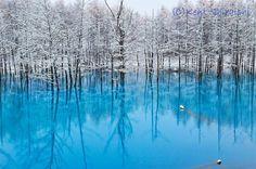 Blue Pond Hokkaido Japon par Kent Shiraishi : Merveilleuse Nature Turquoise