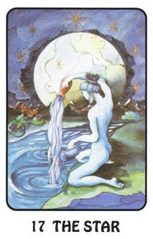 April 5 Tarot Card: The Star! (Karma Tarot deck) A good omen for your current wishes and dreams AND 17 is my lucky number! Oh yeah. Tarot Cards Major Arcana, Star Tarot, I Ching, Tarot Learning, Age Of Aquarius, Tarot Card Meanings, Angel Cards, Oracle Cards, Tarot Decks