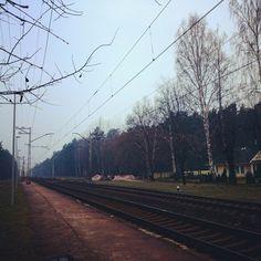 Normal November day)) as usual) Railroad Tracks, November, Challenges, November Born, Train Tracks