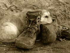 Bed of boots   Flickr