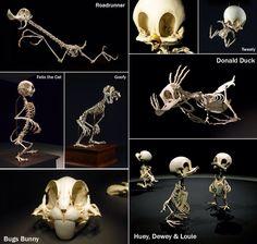 Looney toon skeletons