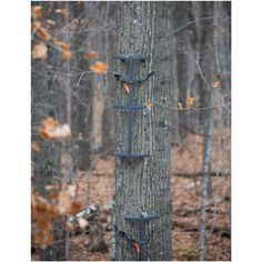 3-Pk. of Rivers Edge® Grip Sticks - 608416, Ladder Tree Stands at Sportsman's Guide