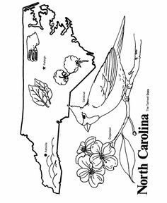 Florida State outline Coloring Page. I copy the image and