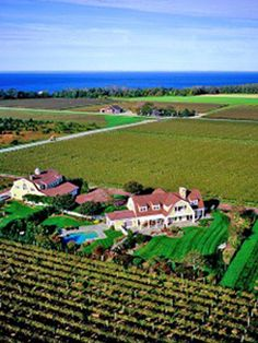 Long Island Wine Country - another favorite summer place