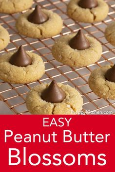 peanut butter cookies These ULTRA-easy, melt-in-your-mouth peanut butter blossom cookies from Preppy Kitchen have lots of peanut butter flavor and a big kiss of chocolate right in the middle. Make them for your holiday cookie tray! Chocolate Chip Cookies, Making Peanut Butter, Peanut Butter Blossom Cookies, Chewy Peanut Butter Cookies, Best Peanut Butter, Peanut Blossoms, Peanut Butter Cake Balls Recipe, Peanut Butter Thumbprint Cookies, Chocolate Peanut Butter