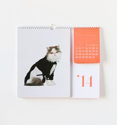 We designed a capsule collection for United Bamboo's Catclub. The collection includes a 2014 calendar shot by Noah Sheldon, life-size cat pillows, a stationery set and foil stamped stickers and wrapping paper. Creative Calendar, Calendar Design, Cat Calendar, Desk Calender, Calendar Ideas, Printable Calendar Template, Cat Pillow, Layout Inspiration, Daily Inspiration