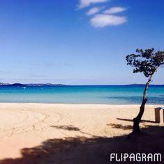 Budoni San Teodoro Sardegna - Video Promozionale Orizzonte Casa Sardegna. Agenzia immobiliare www.orizzontecasasardegna.com  #flipagram featuring @instaplacemobi Creato con @Flipagram App ♫ Musica: Led Zeppelin - All My Love #immobiliare #realestate #sardinia #sardegna #sardiniaexperience #allwayssardinia #lifestyle #instacool #instagram #igers #igersardegna #instagramsardegna #instatravel #travelgram #love