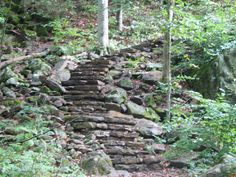 Stone stairs, Lost Valley Trail, Arkansas
