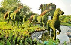 Amazing Grass sculptures of horse Montreal Botanical Garden, Botanical Gardens, Amazing Gardens, Beautiful Gardens, Amazing Grass, Grass Flower, Topiary Garden, Running Horses, Garden Park