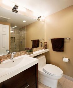 adapt for guest bath? Extended counter/shelf over toilet.