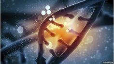 ••NATIONAL DNA•• assessed in Iceland study by deCODE genetics (Dr Kari Stefansson) - BBC article 2015-03-26 published in journal Nature Genetics www.nature.com/ng/journal/vaop/ncurrent/full/ng.3247.html • we can now find every woman at high-risk of breast cancer for example or Alzheimer or discovering our last human common ancestor was 239k years ago, not 308k...imagine  transformative genomic medicine at scale • only concerns: public vs anonymity + commercial interests