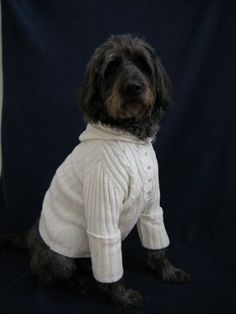Cute recycled dog sweater from an old discard.  My dog loves it!