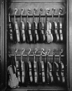 Rows of vintage violins