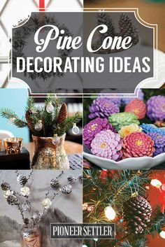 20 Pine Cone Decorating Ideas For The Holidays   Christmas And Thanksgiving Crafts & Projects by Pioneer Settler at http://pioneersettler.com/pine-cone-decorating-ideas/