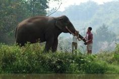 Backyard Travel Tempts Honeymooners with Thai Particular - http://thailand-mega.com/backyard-travel-tempts-honeymooners-with-thai-particular/