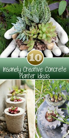 10 Insanely Creative Concrete Planter Ideas CONTINUE:…