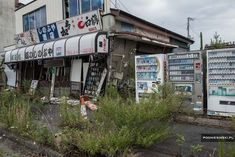 This is an abandoned street in the town of Namie, which lies within the Fukushima exclusion zone.