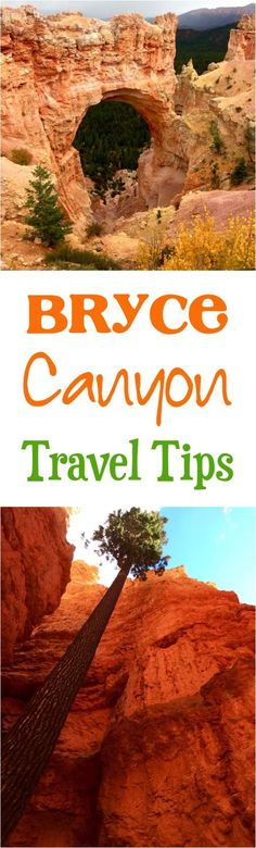 Bryce Canyon National Park Utah!  Best Hikes + Tips for Bryce Canyon with Kids! | NeverEndingJourneys.com